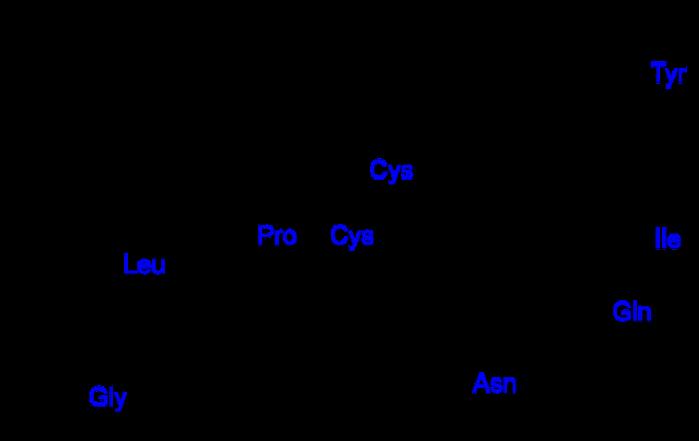 5239983_peptidi (700x441, 54Kb)