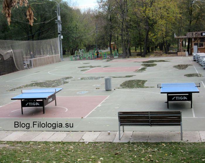 Столы для настольного тенниса, установленные на улице (700x559, 78Kb)