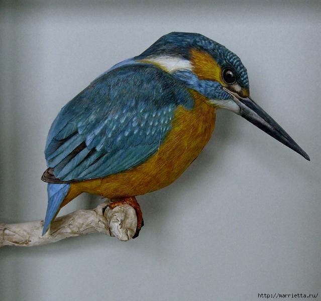 Птица из бумаги. Обыкновенный зимородок (639x600, 288Kb)