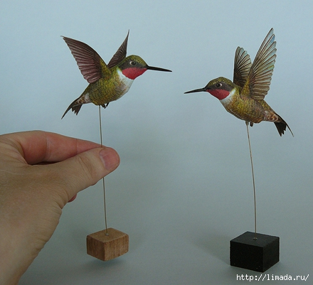 hummingbirds (440x401, 120Kb)