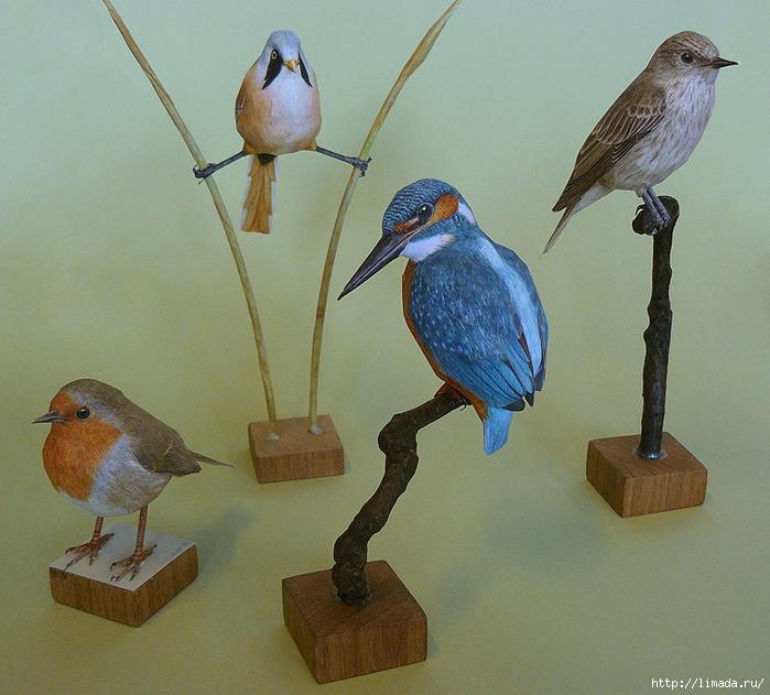 vier vogels (700x631, 372Kb)