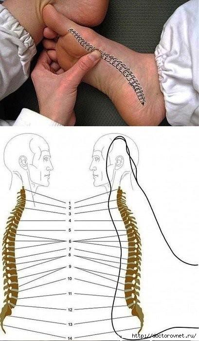 Боль сзади в районе почек и поясницы что это в правом боку