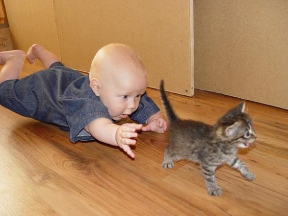 дитя и котенок (590x442, 33Kb)