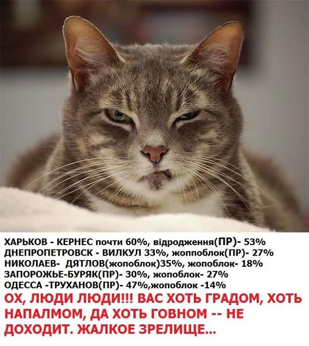 Коалиция не смогла договориться о дате проведения выборов в Мариуполе и Красноармейске, - Луценко - Цензор.НЕТ 4295