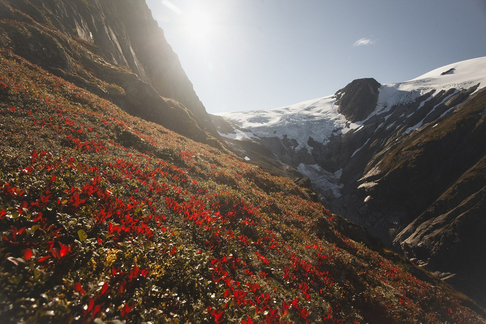 Красота Норвегии (700x467, 422Kb)