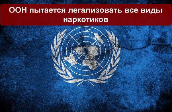ООН пытается легализовать все виды наркотиков (604x395, 92Kb)
