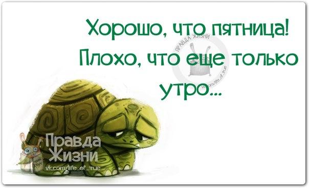 Попкорн (общество, политика) - Том XLVII - Страница 2 125912804_1414697789_frazki2