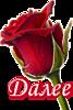 5230261_dalee_kr_roza (67x100, 13Kb)