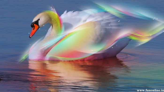 Swan-Abstract-HD-Wallpaper-e1335346320188 (490x275, 39Kb)