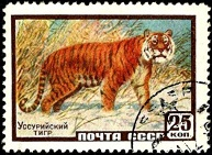 YtSU 2179  Ussuri Tiger Уссурийский тигр (193x141, 22Kb)