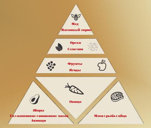 3183520_Pishevaya_piramida_PALEO (500x425, 33Kb)