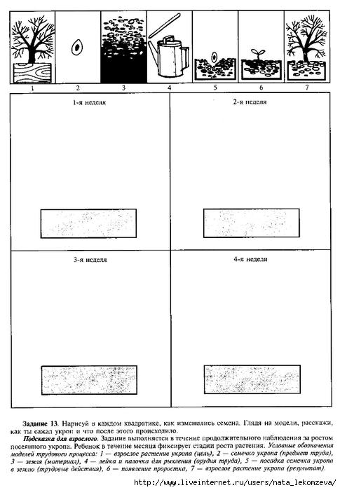 Scan0020 (485x700, 146Kb)