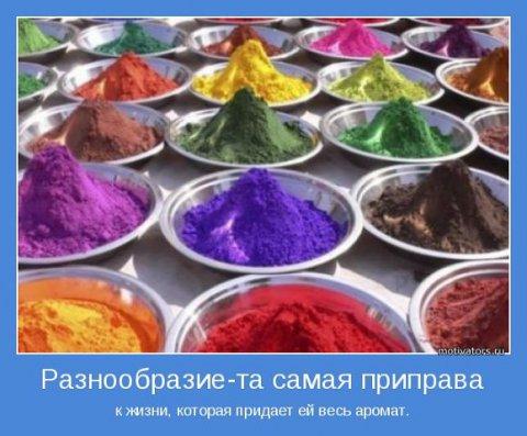 разнообразие краски (480x397, 48Kb)