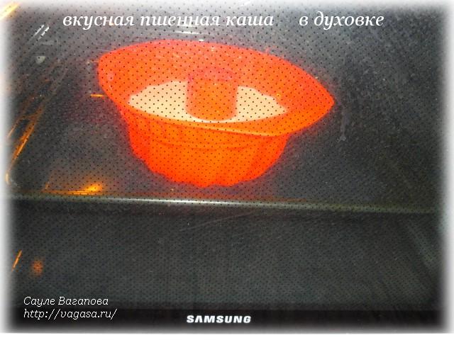 пшенная каша   /5156954_v_dyhovke (640x480, 116Kb)