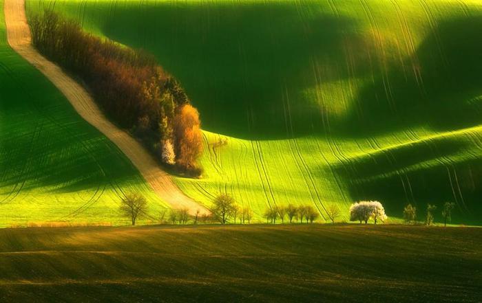 11. Зелёные ландшафты Моравии (700x441, 41Kb)
