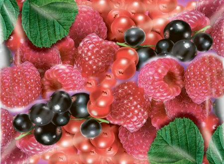 здоровье 3 ягоды 450 (450x329, 40Kb)