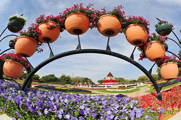 парк цветов  Al Ain Paradise фото 11 (600x400, 133Kb)