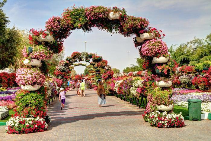 парк цветов  Al Ain Paradise фото 13 (700x466, 92Kb)