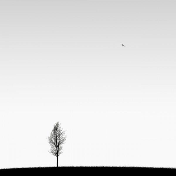 одиночество 8 (600x600, 15Kb)