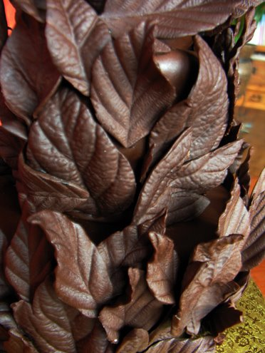 Chocolate-Leaves-Close-Up (372x495, 45Kb)