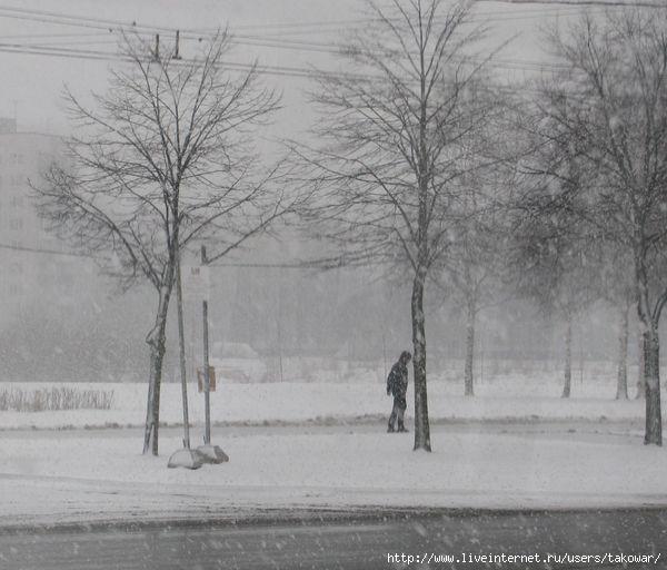 Петербург. Снег. Апрель./1364933563_IMG_0102 (600x512, 129Kb)