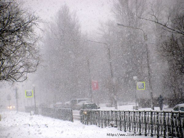 Петербург. Снег. Апрель./1364933608_IMG_0104 (600x450, 160Kb)