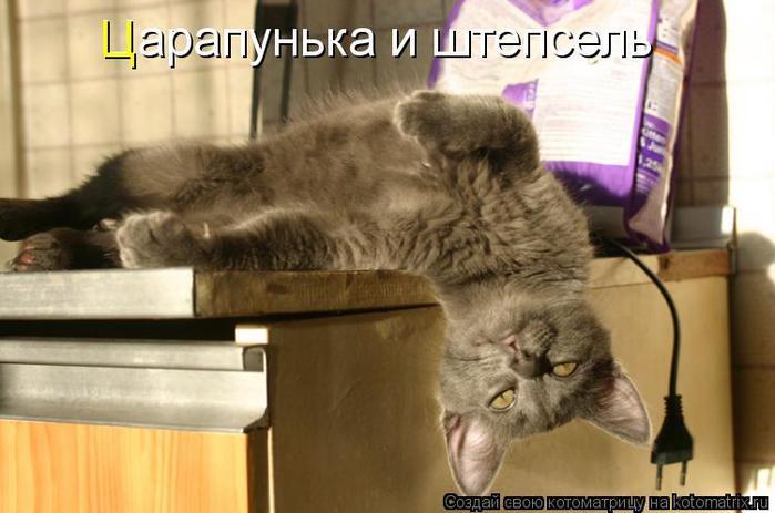 kotomatritsa_MK (700x463, 44Kb)