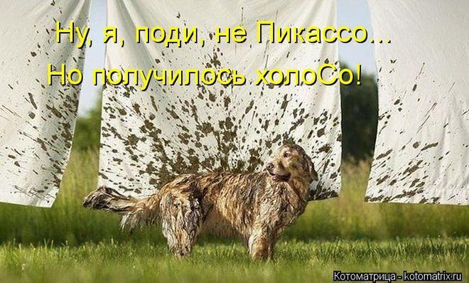 kotomatritsa_2e (660x398, 69Kb)