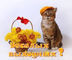 3470549_vihodnoi3_1_ (246x205, 13Kb)