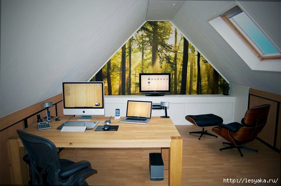 3925073_attichomeofficedesign10 (554x367, 106Kb)