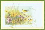 Превью Impressions of Nature 2004-07 (700x475, 87Kb)
