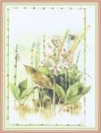 Превью Impressions of Nature 2004-16 (529x700, 243Kb)