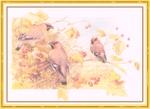 Превью Impressions of Nature 2004-28 (700x509, 233Kb)
