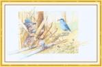 Превью Impressions of Nature 2004-30 (700x452, 206Kb)