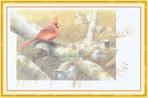 Превью Impressions of Nature 2004-35 (700x461, 235Kb)
