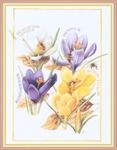 Превью Impressions of Nature 2004-44 (546x700, 248Kb)