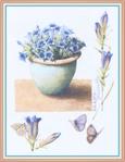 Превью Impressions of Nature 2004-48 (539x700, 238Kb)