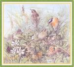 Превью Impressions of Nature 2004-55 (700x637, 346Kb)