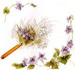 Превью Natures Sketchbook 02 (700x651, 90Kb)