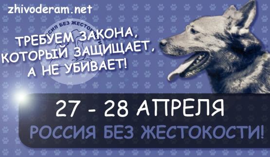 ava-555 (555x323, 152Kb)