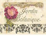 Превью white-kathryn-jardin-botanique (400x315, 38Kb)
