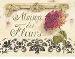 Превью white-kathryn-maison-des-fleurs (400x315, 37Kb)
