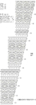 Превью Копия 0_ae0ec_5e0016e9_orig (239x700, 98Kb)