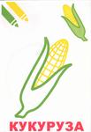 Превью Овощи. Маленький художник. От 2-х лет_5 (482x700, 195Kb)