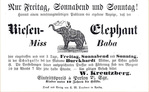 Превью Ephemera-Advertisement-Elefant-MissBaba (1) (700x432, 107Kb)