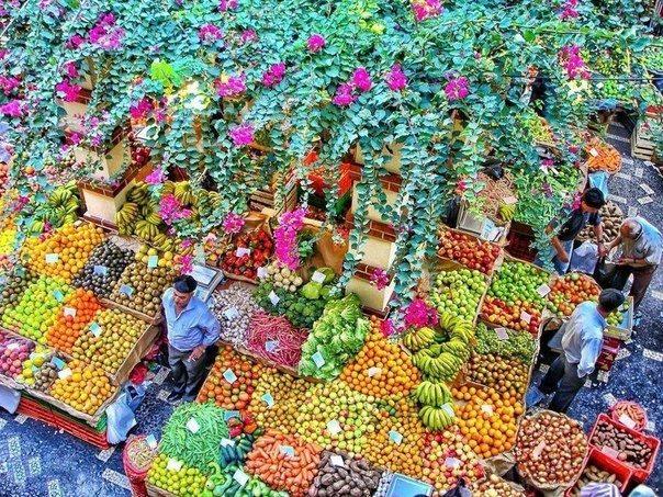 Фруктовый рынок на острове Мадейра (604x453, 139Kb)