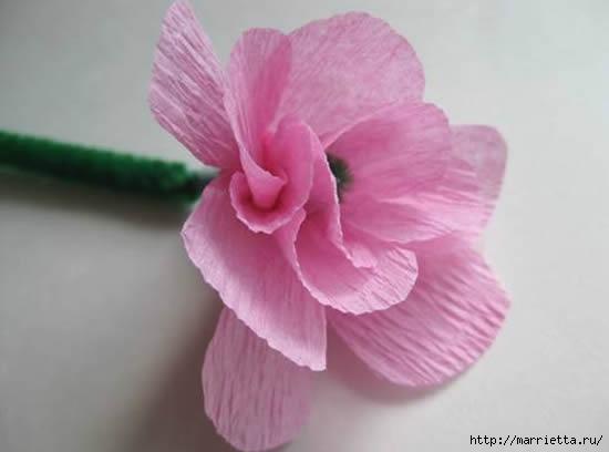 цветы из гофрированной бумаги (17) (550x408, 58Kb)
