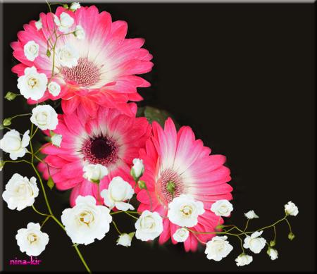 розовые (450x389, 218Kb)