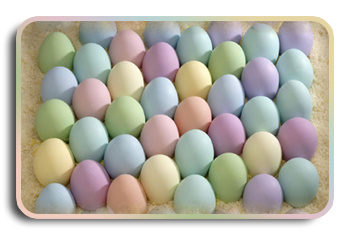 яйца-обр (350x235, 124Kb)