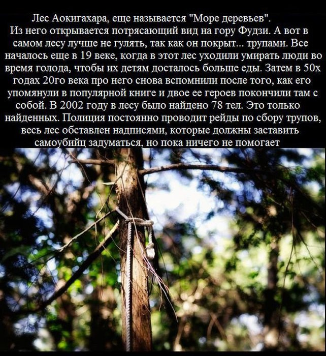 zagadochnye_mesta_so_vsego_mira_11_foto_6 (642x700, 137Kb)